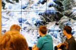 Video Wall to look at Mt Everest
