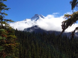 Mt Jefferson from Whitewater Trail