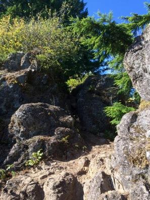 Radically steep trail
