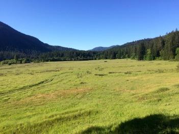 USFS-Pasture