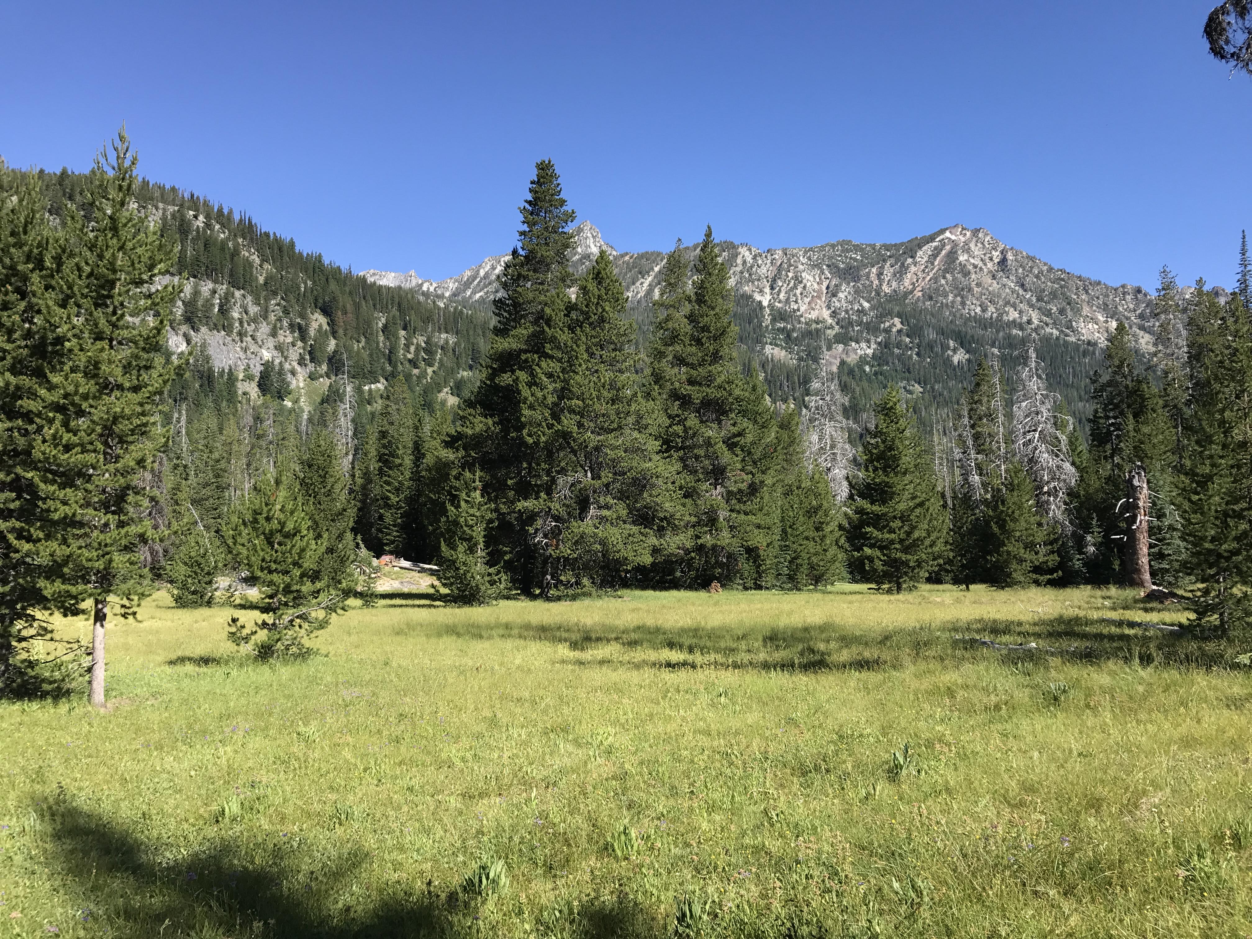 Six Mile Meadow