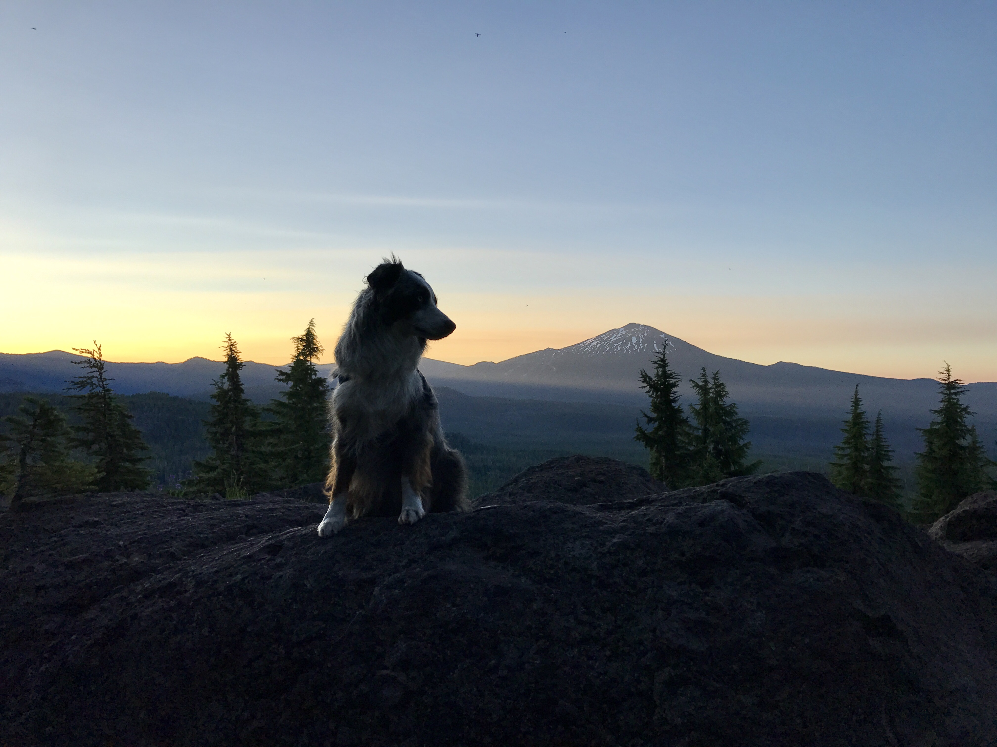 Brook with Sunrise over Mt Bachelor