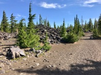 Trail to Lava Lake Trailhead