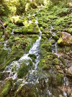 Hillside cascading waterfall