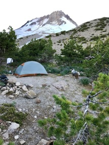 High Campsite