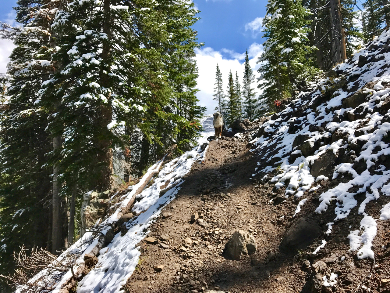 Snow on the Climb