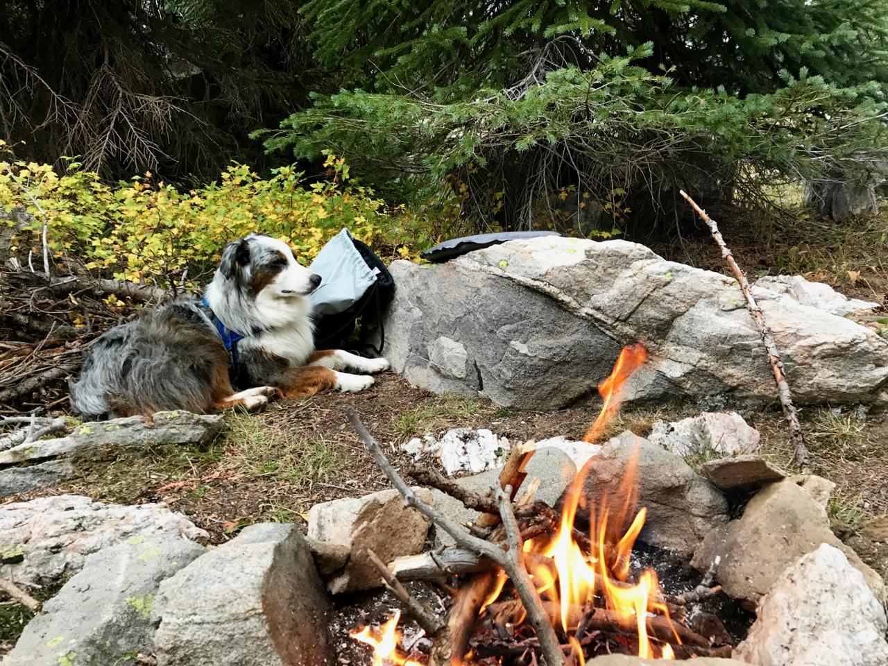 Campfire at Gold Creek