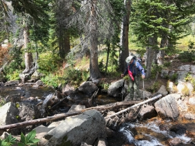 Stream Crossing before Gilpin Lake