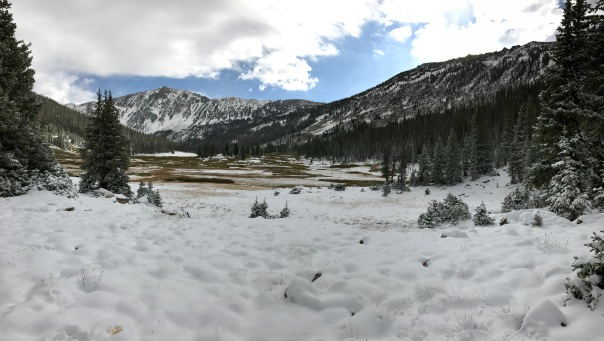 Gold Creek Meadow Snow Pan