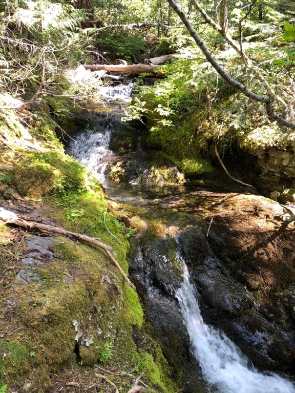 Stream near Pansy TH