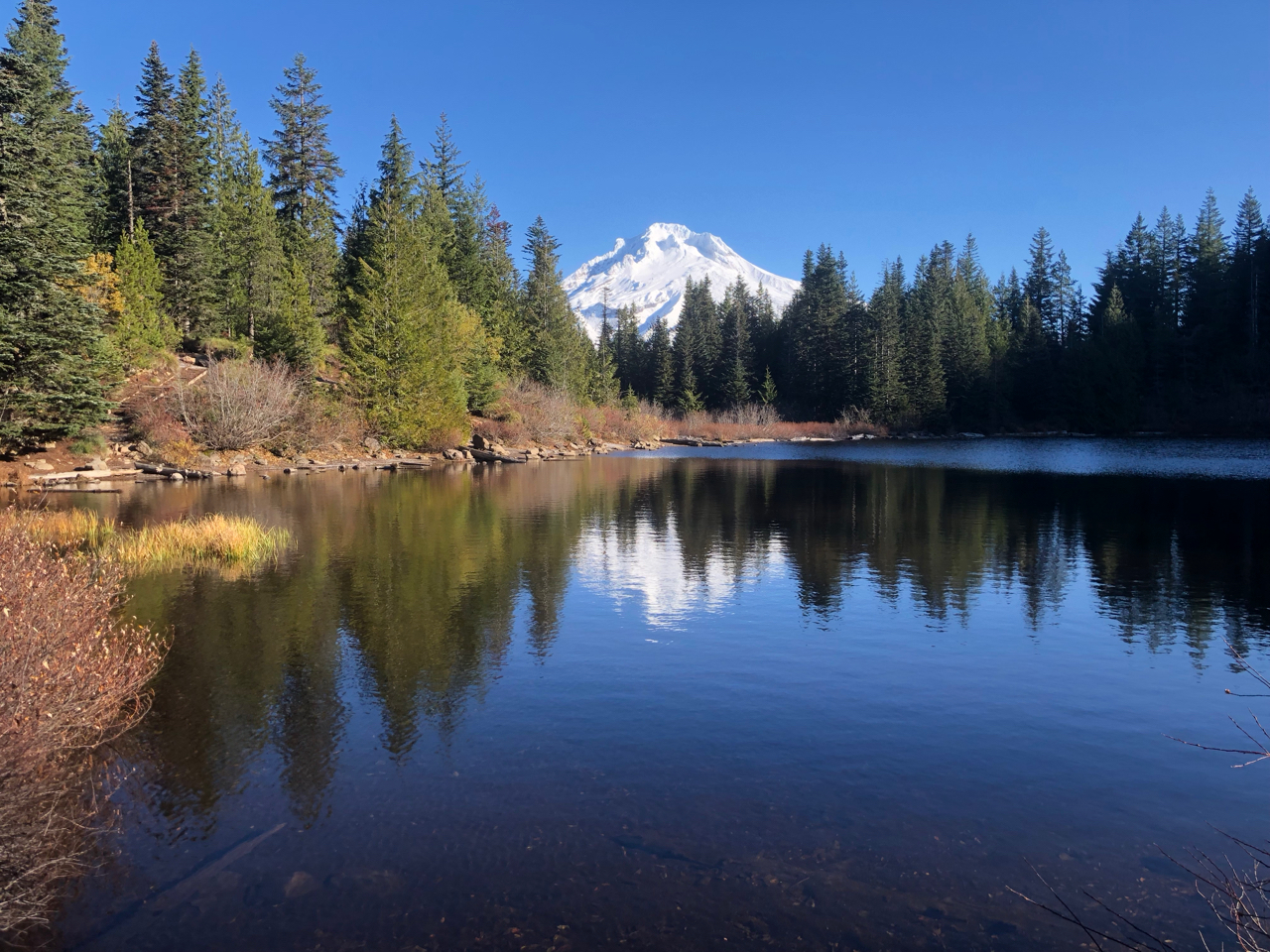 Mt Hood from Mirror Lake