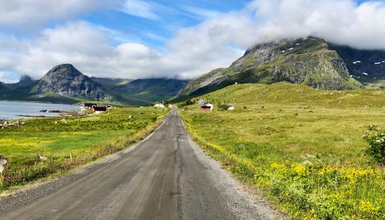 Road to Selfjord Bay Trailhead