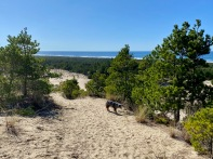Tahkenitch - Approaching Beach2