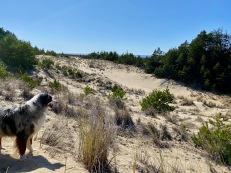 Tahkenitch - Approaching Beach4