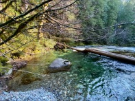 Opal Creek Chillaxing