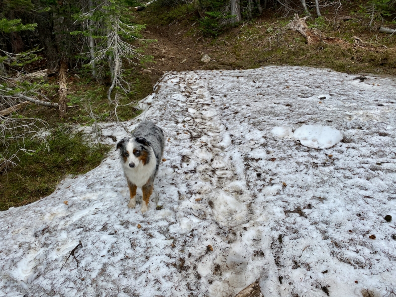 Snow on the Slide Lake Trail