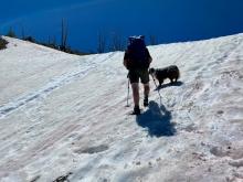 Tricky Snow Climb
