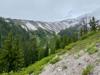 HikeToMtHoodMeadows2