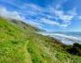 Lost Coast Trail2021